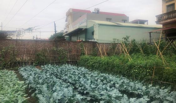 TP. Bắc Ninh: Nhà xưởng trái phép ngang nhiên xây dựng trên đất nông nghiệp?