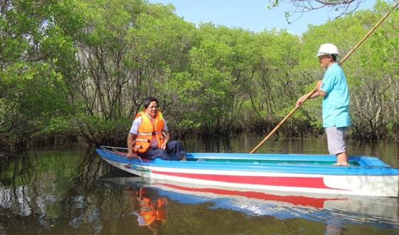 Người dân Quảng Ngãi bảo vệ rừng ngập mặn để giữ làng
