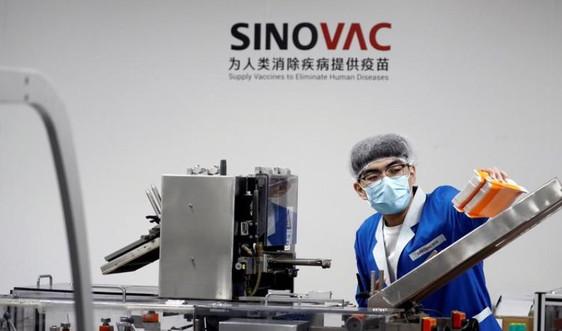 Sinovac công bố vaccine Covid-19 tạo phản ứng miễn dịch nhanh
