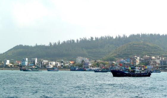 Xây dựng kinh tế biển xanh – trọng điểm cho phát triển bền vững biển Quảng Ngãi