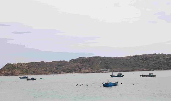 Bình Định: Giao quyền cho Tổ chức cộng đồng thực hiện đồng quản lý bảo vệ nguồn lợi thủy sản