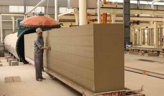 Cần đòn bẩy cho gạch không nung phát triển trên thị trường Bình Định