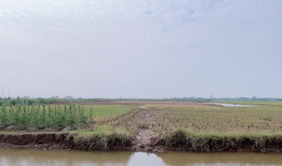 Đông Hưng - Thái Bình: Chậm báo cáo kết quả kiểm tra việc bán đất ruộng trái phép tại xã Minh Tân