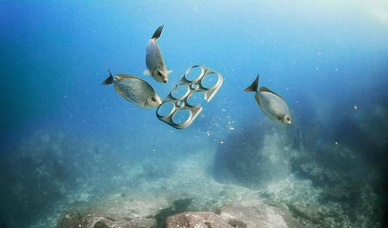 """WWF cùng Việt Nam chống """"ô nhiễm trắng"""", bảo vệ sinh vật biển"""