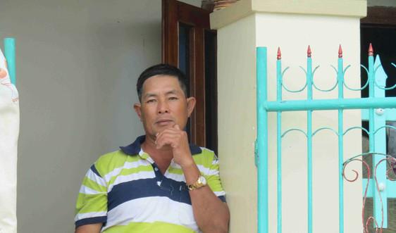 Phú Yên: Người dân Sông Cầu nuôi tôm hùm đau đáu nỗi lo nợ nần