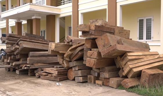 Quảng Bình: Bắt giữ nhiều đối tượng phá rừng quy mô lớn