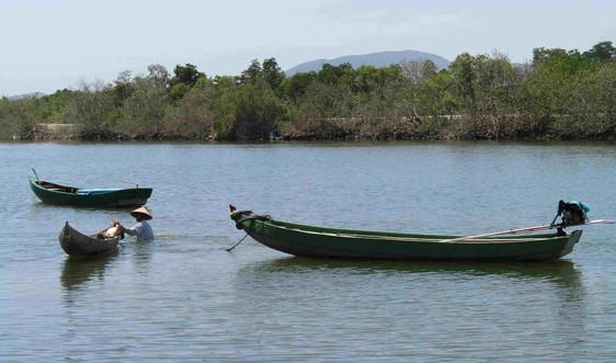 Bảo tồn đa dạng sinh học vùng đầm tỉnh Bình Định