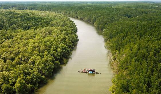 Giữ rừng để nuôi những dòng sông
