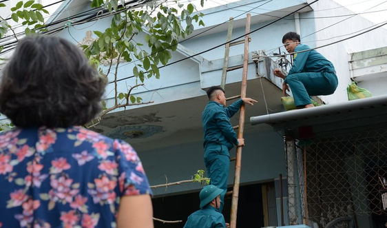 Mỗi khi bão vào - thanh niên Đà Nẵng lao ra chống bão giúp dân