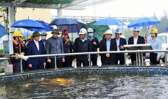 Hội đồng Giám sát liên ngành thị sát các công trình BVMT của Công ty Formosa Hà Tĩnh