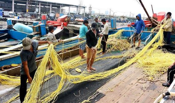 Đà Nẵng: Hỗ trợ nâng cao năng lực khai thác, đánh bắt thủy sản cho ngư dân