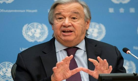 """Người đứng đầu Liên Hợp Quốc kêu gọi các nước ban bố """"tình trạng khẩn cấp"""" về khí hậu"""