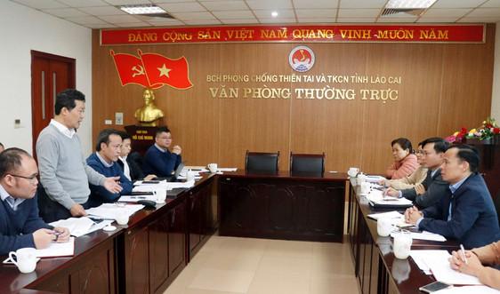 Kiểm tra công tác phòng chống thiên tai và ứng phó với rét đậm rét hại tại Lào Cai