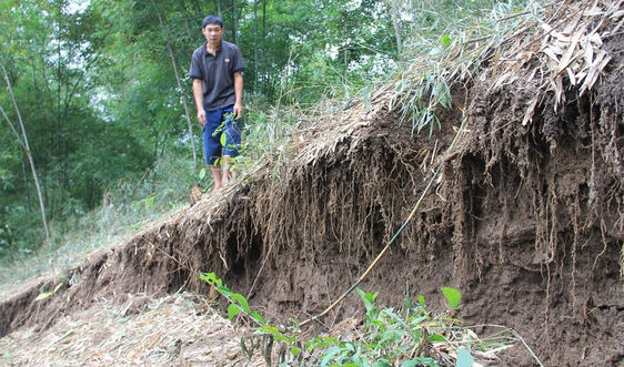 Nghệ An: Khó khăn TĐC phục vụ di dân vùng sạt lở
