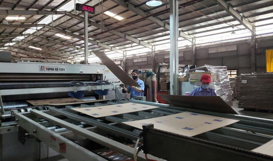 Đà Nẵng: Phát triển bền vững với kinh tế tuần hoàn