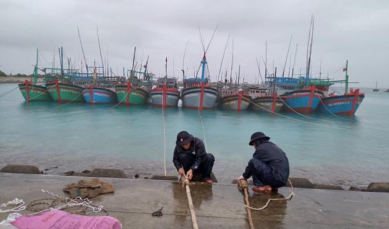 Hỗ trợ kịp thời gần 600 ngư dân vào tránh, trú bão số 14 tại huyện đảo Trường Sa