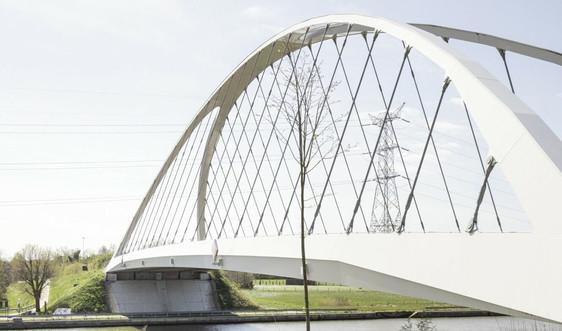 Ban Thường vụ Thành ủy Hải Phòng đồng ý chủ trương đầu tư xây dựng cầu Nguyễn Trãi