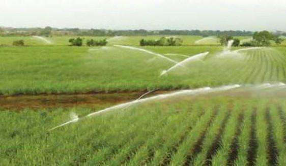 An Giang chi hơn 360 tỷ giúp đồng bào giữ nước