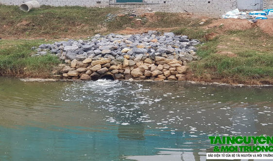 """Nghi Sơn (Thanh Hóa): HTX Liên Minh """"thẳng tay"""" xả thải ra môi trường"""