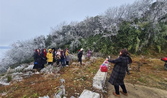 Cao Bằng: Vẻ đẹp băng giá trên đỉnh núi Phja Oắc