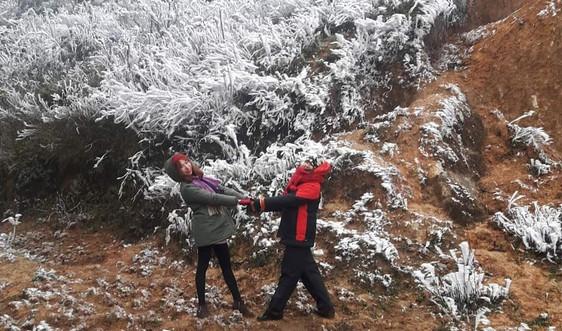 Mù Cang Chải - Yên Bái: Băng giá phủ kín đèo Khau Phạ