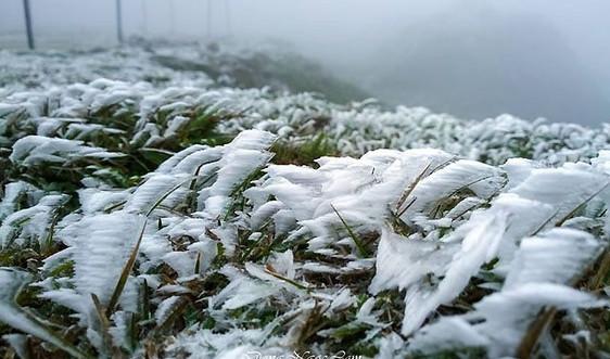 Bắc Bộ đến Thừa Thiên - Huế tiếp tục rét hại, vùng núi khả năng xảy ra băng giá