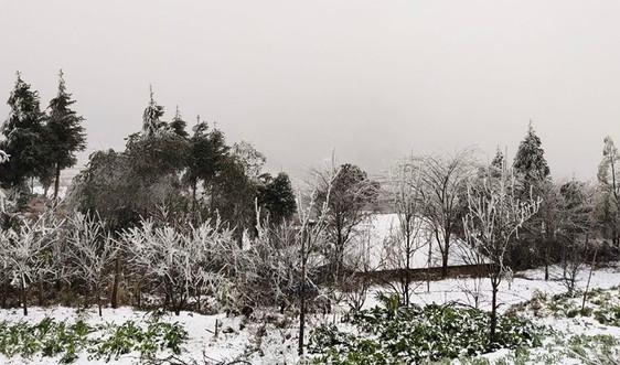 Lào Cai: Xuất hiện tuyết rơi tại Sa Pa và Ý Tý