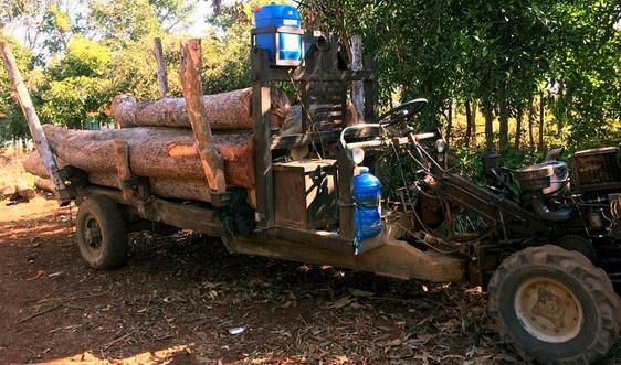 Bắt 1 xe công nông chở gỗ lậu