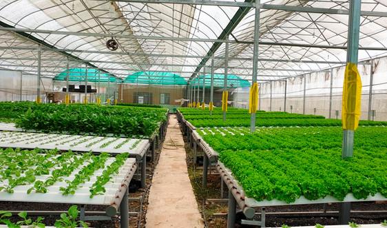 Thanh Hóa: Thực hiện giải pháp bảo vệ môi trường trong sản xuất nông nghiệp