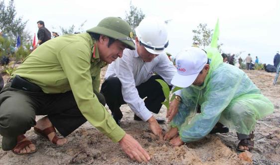 """Quảng Nam: Tổ chức """"Tết trồng cây"""" và tăng cường bảo vệ, phát triển rừng"""