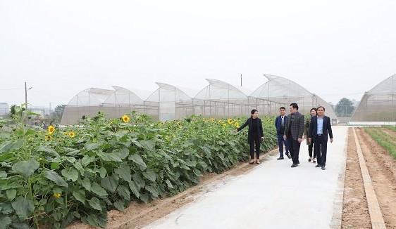 Thường Tín: Hành trình về đích huyện nông thôn mới