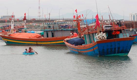 Quảng Bình: Trích hơn 31 tỷ đồng hỗ trợ tàu cá khai thác vùng biển xa