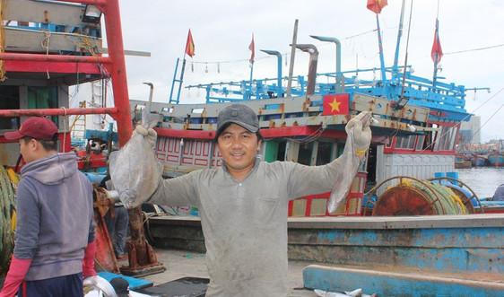 Tươi rói nụ cười sau chuyến biển cuối năm của ngư dân miền Trung