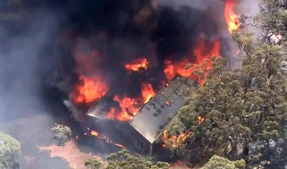 Cháy rừng lớn tại thành phố đang phong tỏa COVID-19