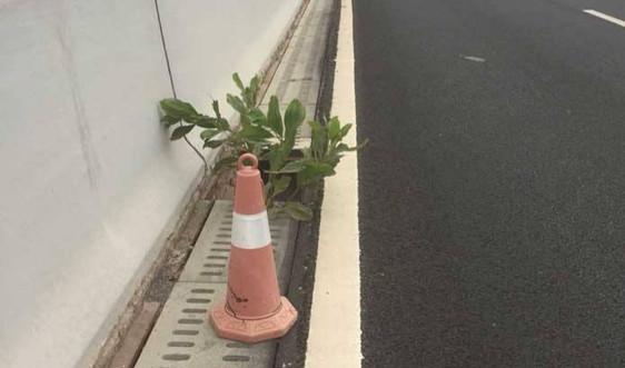Lạng Sơn: Bắt giữ đối tượng trộm hàng chục tấm đan trên cao tốc Bắc Giang – Lạng Sơn