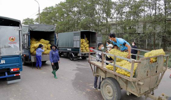 Quảng Ninh: Từ 18h ngày 9/2 dừng giãn cách xã hội đối với TX.Đông Triều và huyện Vân Đồn