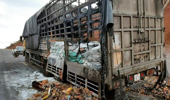 Xe tải chở vàng mã bốc cháy trên đường Hồ Chí Minh