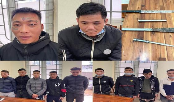 Thanh Hóa: Bắt giữ nhóm đối tượng chặt phá đào, quất của người dân