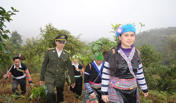 Yên Bái: Cả cộng đồng cùng tham gia bảo vệ rừng