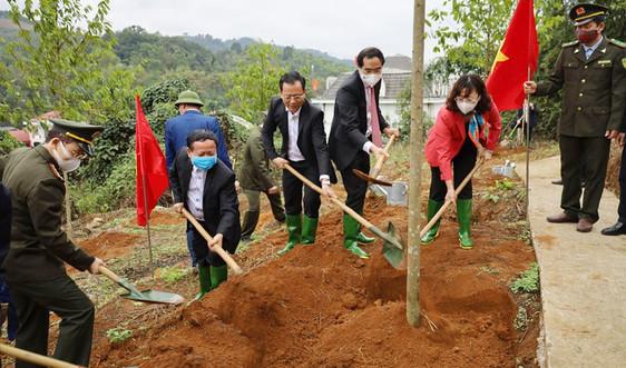"""Lào Cai: Phát động """"Tết trồng cây - Đời đời nhớ ơn Bác Hồ"""" Xuân Tân Sửu 2021"""