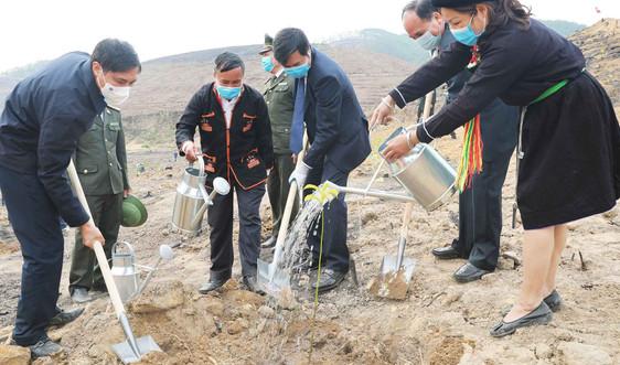 """Quảng Ninh phát động Tết trồng cây """"Đời đời nhớ ơn Bác Hồ"""""""