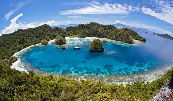 Thế giới chung tay bảo tồn bền vững đại dương