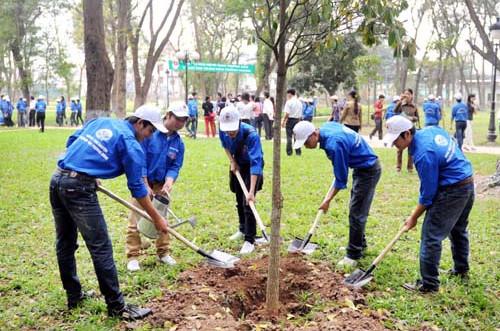 Rà soát dự thảo kế hoạch triển khai thi hành Luật Bảo vệ môi trường