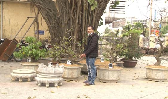 Bắt đối tượng trộm hàng loạt cây mai cảnh tại Huế