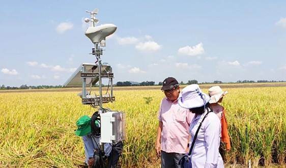Phát triển dịch vụ khí hậu: Hướng đi mới để nâng cao hiệu quả sản xuất