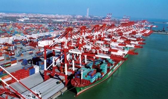 Trị giá xuất nhập khẩu Việt Nam đạt hơn 19 tỷ USD