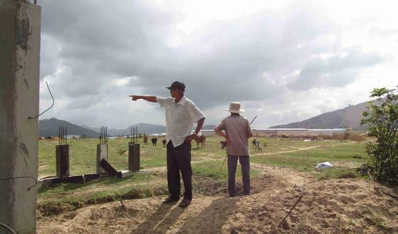 Bình Định: Người dân mòn mỏi chờ bồi thường từ dự án Cơ sở chăn nuôi giống gia cầm Minh Dư