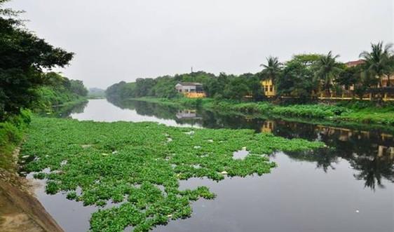 Hà Nam: Tình hình ô nhiễm nước sông Nhuệ, sông Đáy báo động cấp 2