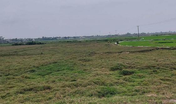 Nghệ An: Thu hồi 12 dự án vi phạm Luật Đất đai