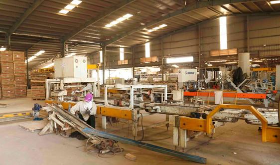 TX.Đông Triều (Quảng Ninh): Đảm bảo sản xuất gắn với công tác phòng, chống dịch